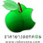 logo_rakayang